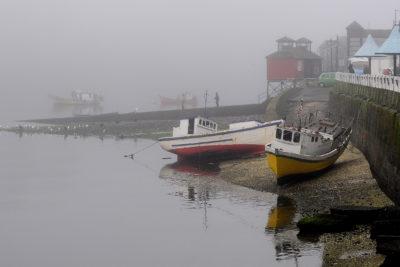 Anuncian plan de control sanitario en las provincias de Chiloé y Palena