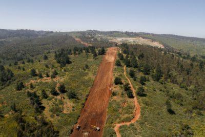 Se cae un mito: Unesco desmiente que plantaciones forestales perjudicarían la cantidad y calidad del agua