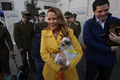 """Cathy Barriga: """"Es lamentable que la prensa nuevamente me agreda e injurie"""""""
