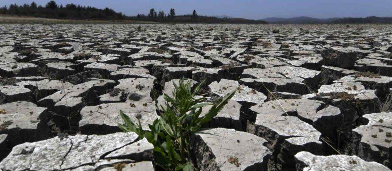 Crisis hídrica: la incansable pandemia que no retrocede en Chile