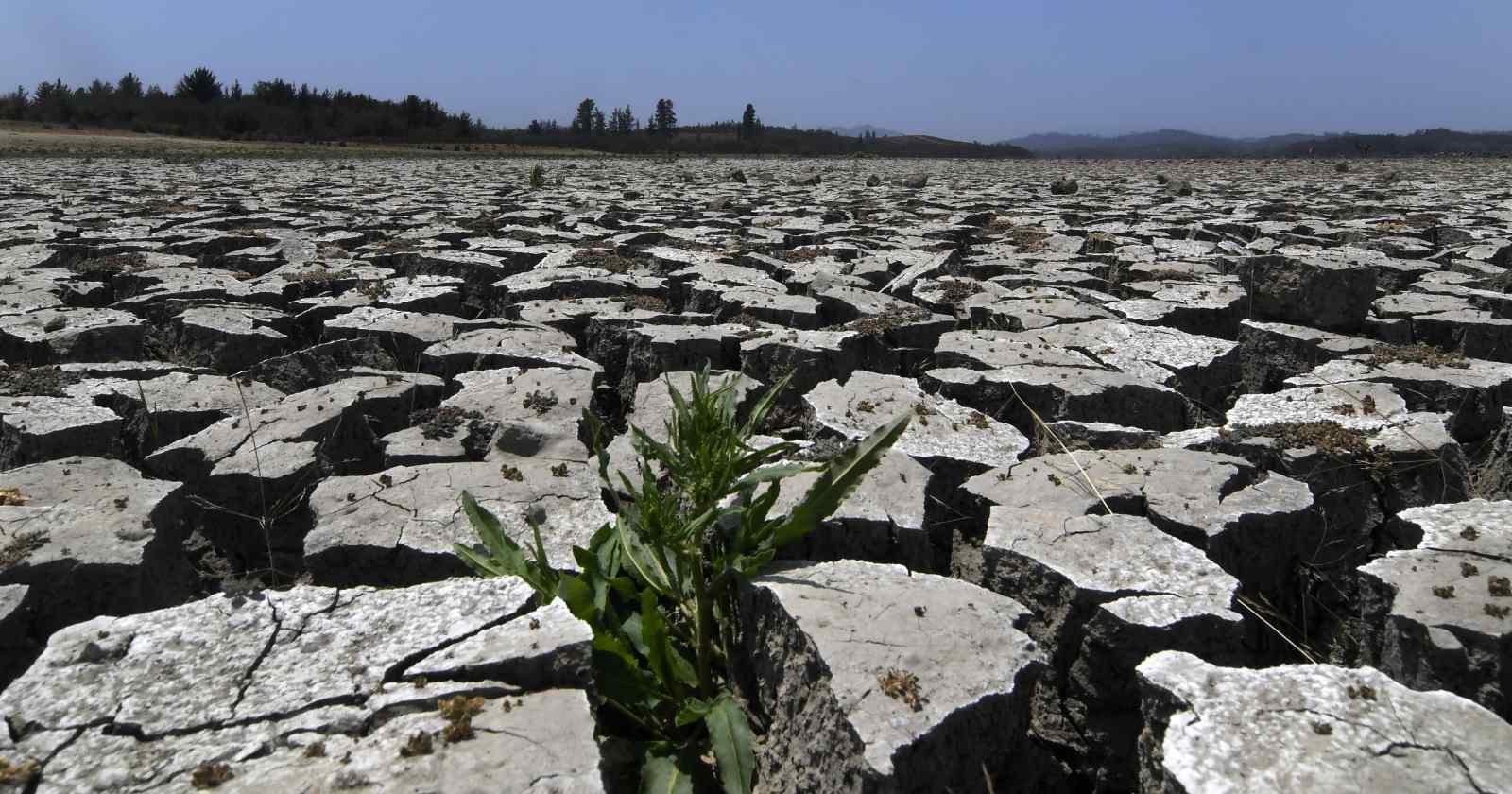 """""""Crisis hídrica: la incansable pandemia que no retrocede en Chile"""""""