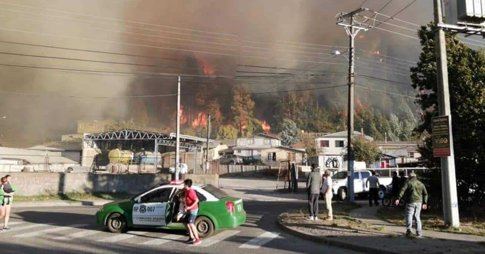 Arauco: 15 viviendas y 30 hectáreas fueron afectadas por incendio