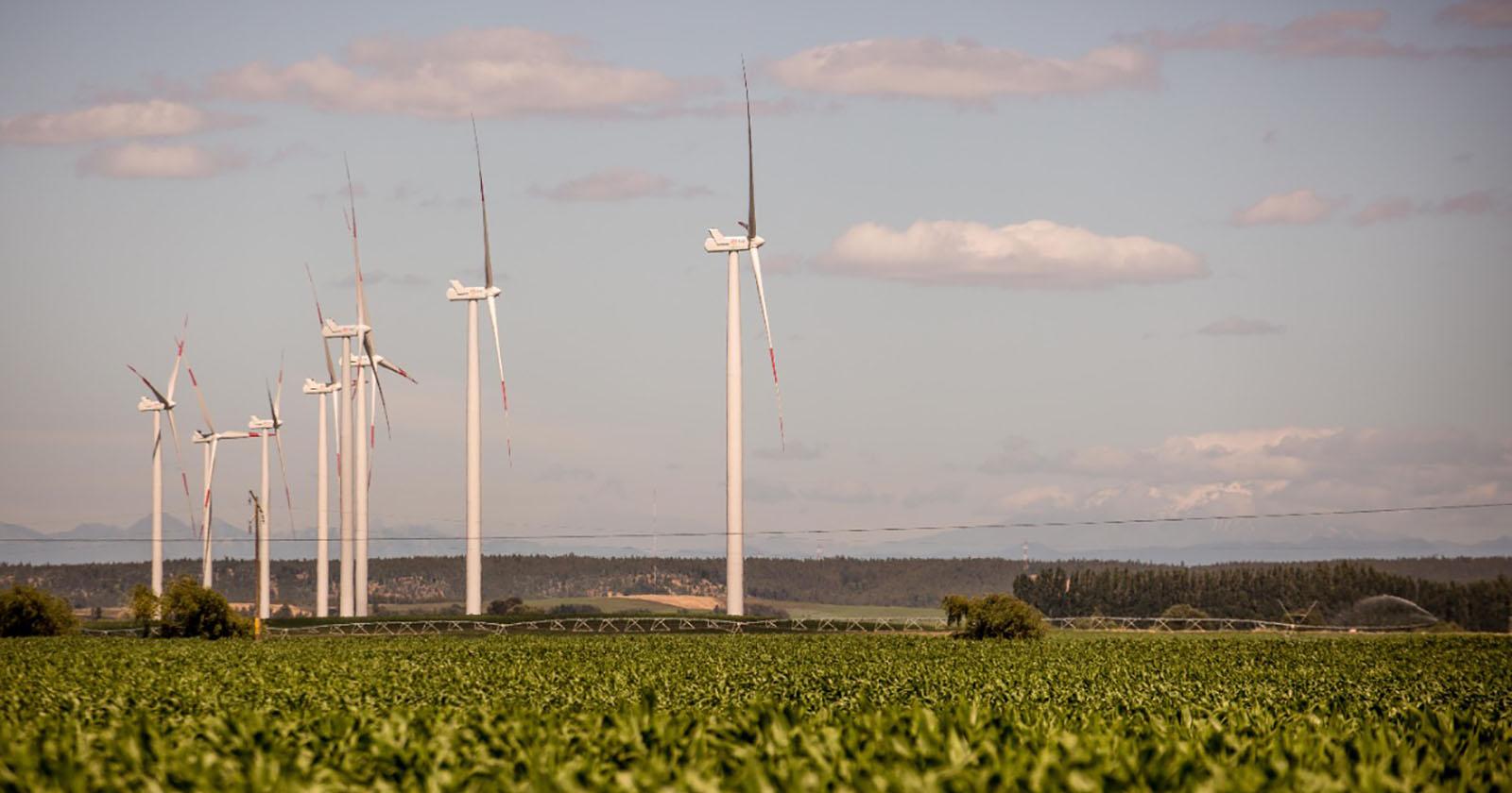 Enel Green Power Chile da inicio a la construcción de su nueva planta eólica