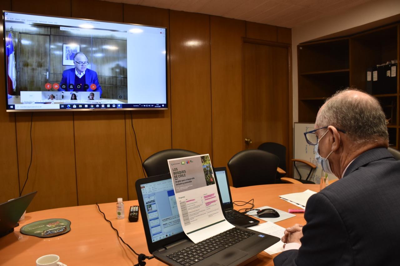 Expertos y autoridades abordaron los desafíos del sector forestal chileno en seminario online