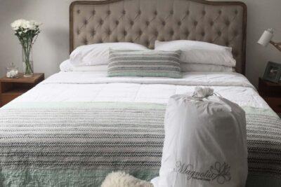 Magnolia Natural Sleep: el emprendimiento que vende salud a través de plumones