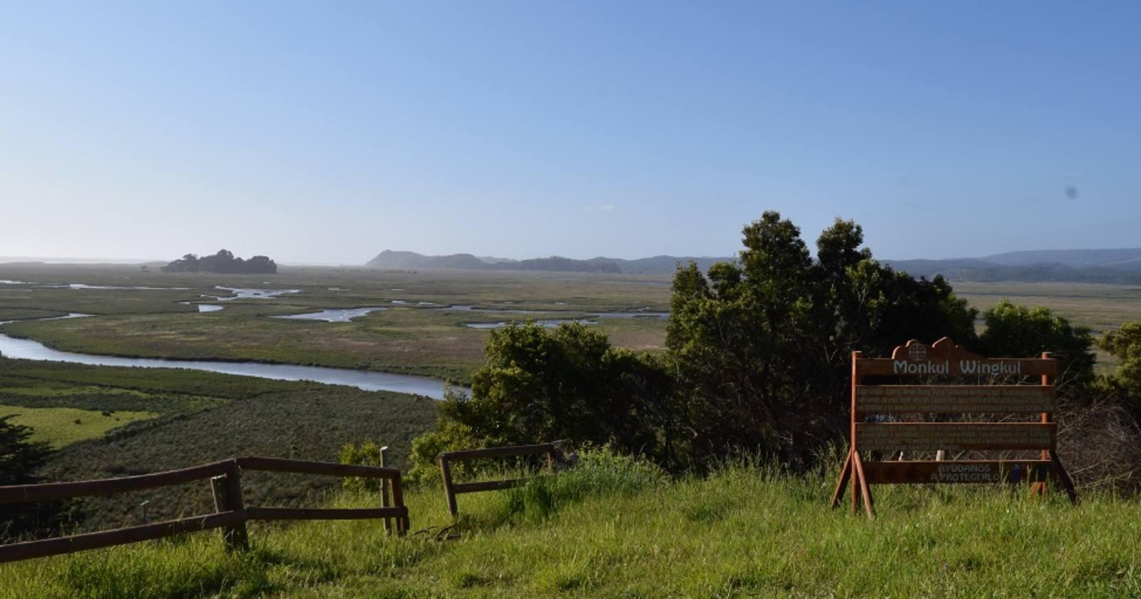 """""""Organismo internacional declara sitio protegido a humedal Monkul administrado por comunidad mapuche"""""""