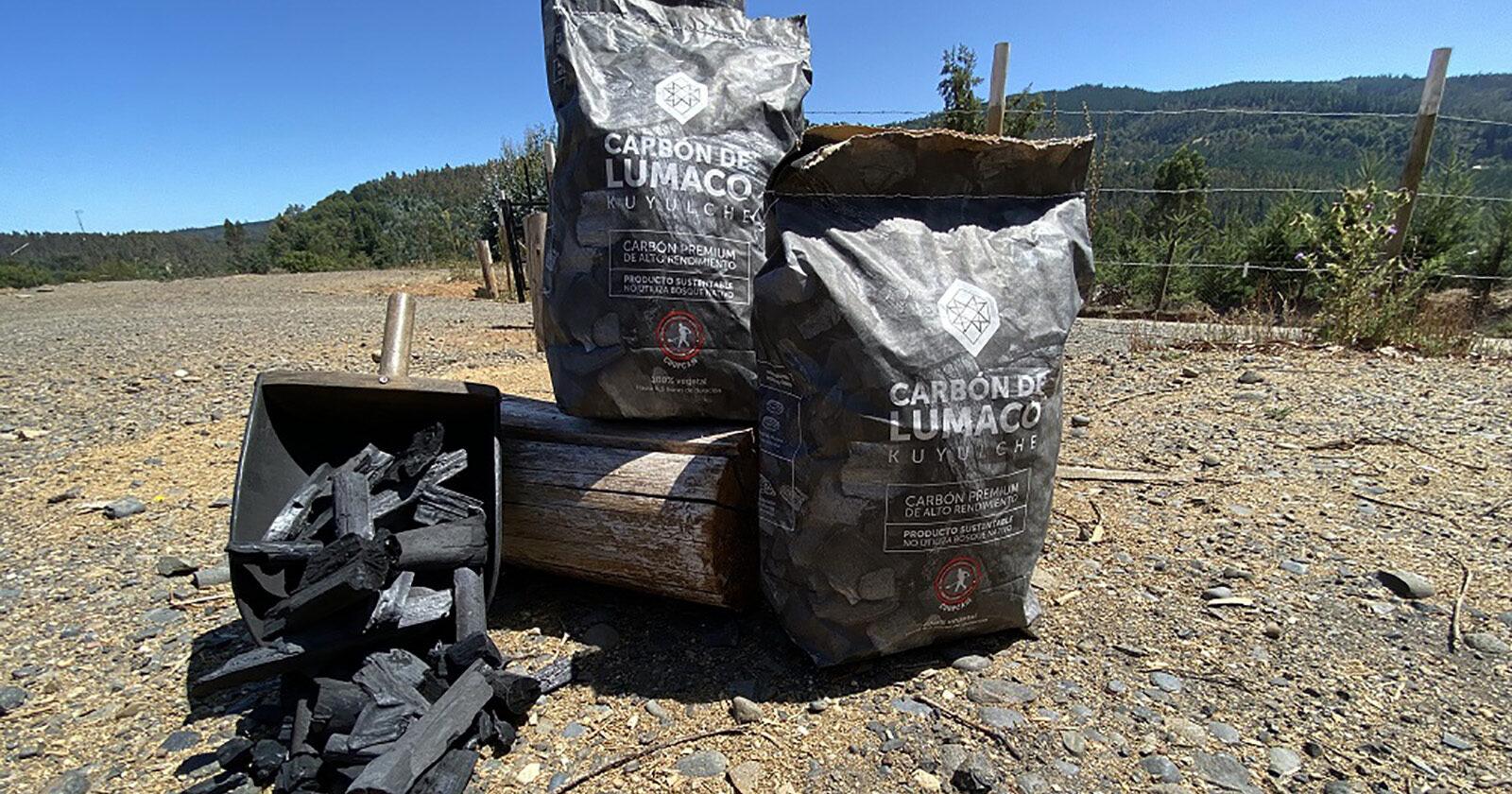 CMPC apoya a cooperativa en la cadena sostenible de la producción de Carbón de Lumaco Kuyulche