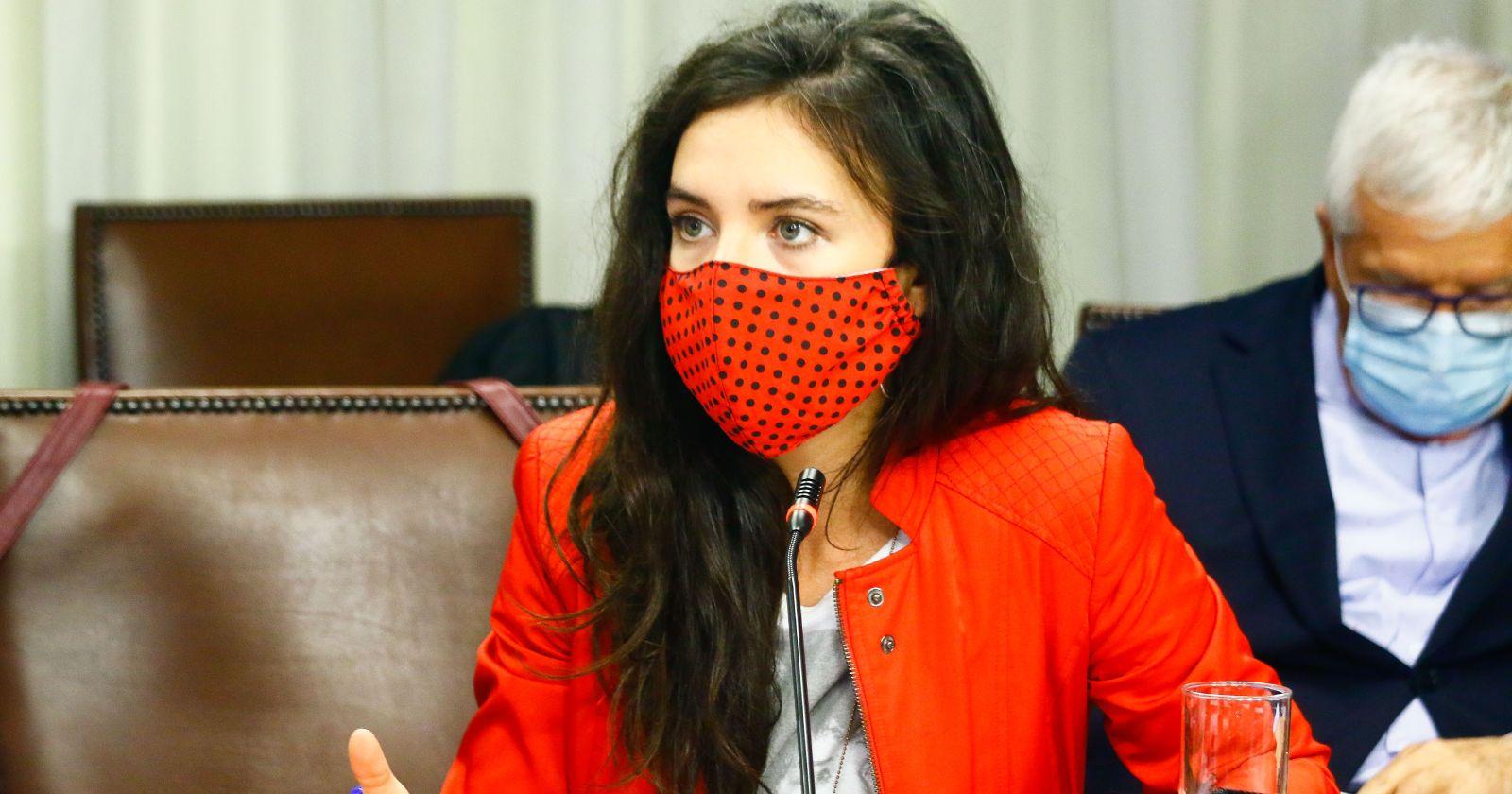 """""""Camila Vallejo es acusada de"""