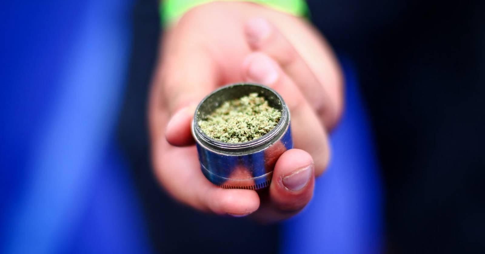 """""""Paraguay anuncia la opción de producir marihuana de exportación"""""""