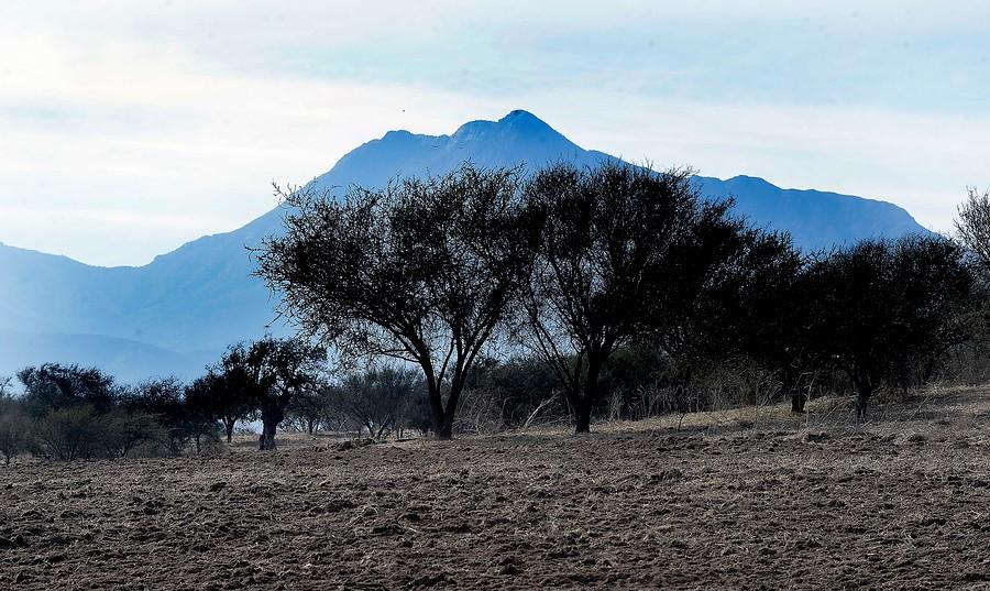 Mega sequía: investigadoras de U. de Chile explican por qué el fenómeno no retrocede