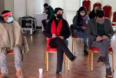 """Ministra Rubilar: """"Ningún grupo se puede atribuir la representación del pueblo mapuche"""""""