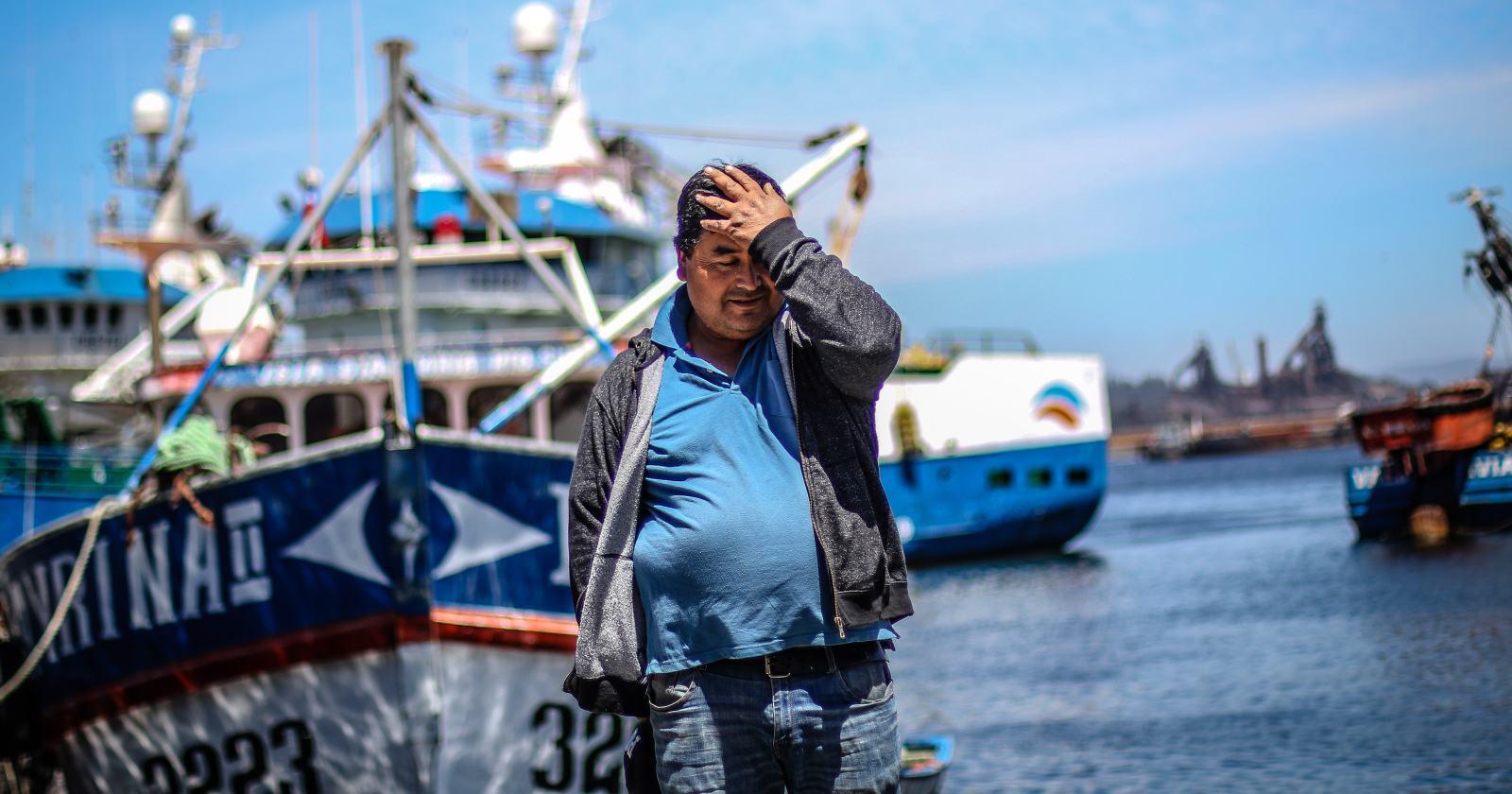 Pesqueras advierten que flota china viene en búsqueda de la jibia chilena