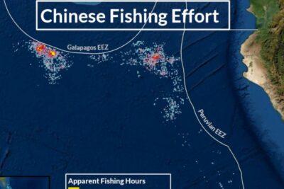 VIDEO – Flota pesquera china que depredó Islas Galápagos se acercaría a Chile