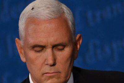La mosca en la cabeza de Mike Pence que se robó las miradas en el debate de vicepresidentes