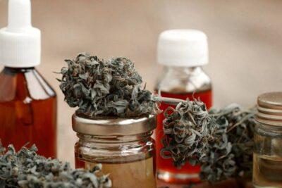 La marihuana se abre paso en América: México y Argentina legalizan autocultivo y el uso medicinal