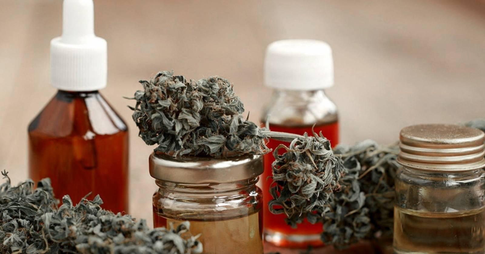 México y Argentina legalizan autocultivo y el uso medicinal de la marihuana
