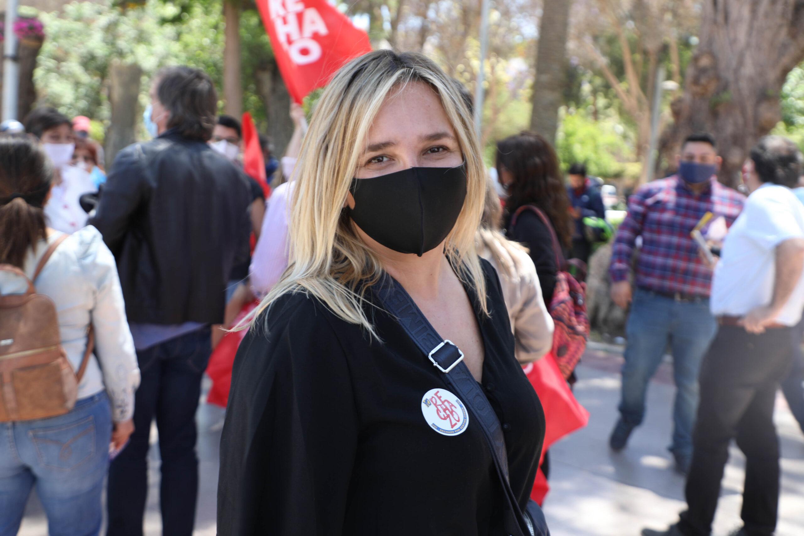 """""""Nos piden votación de kamikaze"""": Hoffmann insiste en tensión entre la UDI y el Gobierno"""