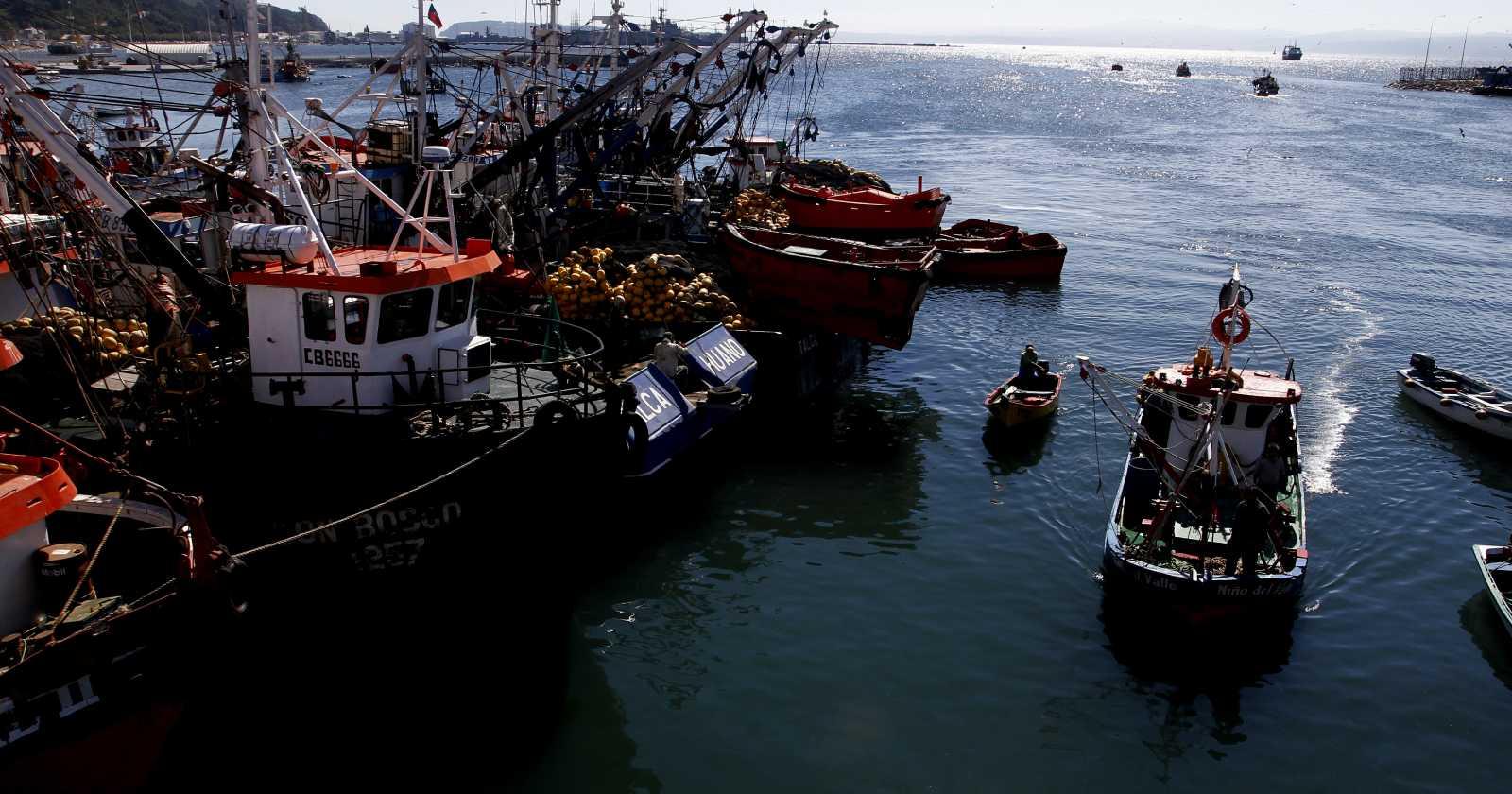 Asipes cuestiona avance de proyecto que anula la Ley de Pesca