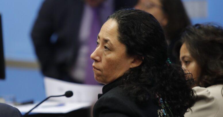 """""""El plan y la organización de los ocho acusados en el Caso Ximena Chong"""""""