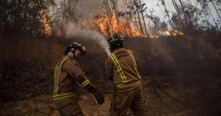 Alerta roja en Quilpué por incendio forestal cercano a sectores habitados