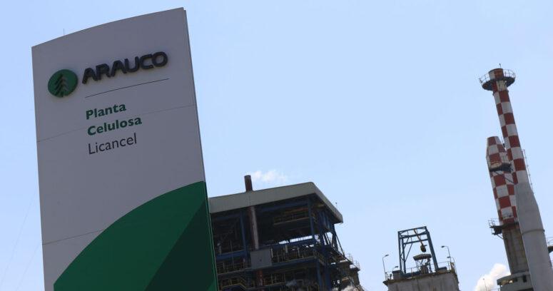 """""""Arauco adquiere propiedad mayoritaria de Odd Industries"""""""