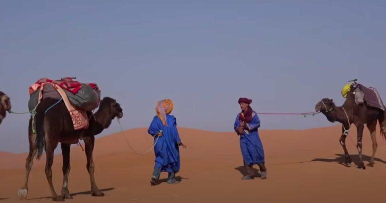 Soberanía de Marruecos sobre el Sahara: un reconocimiento justo y necesario para el crecimiento de África