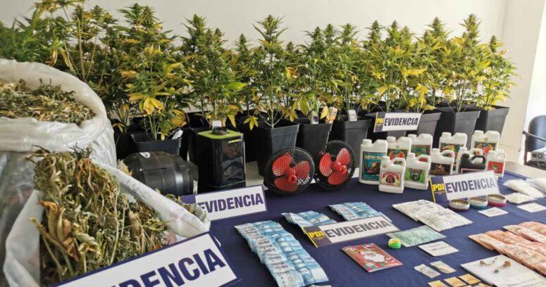 """""""Detienen a sujeto que vendía drogas en tarjetas de Navidad en Concepción"""""""