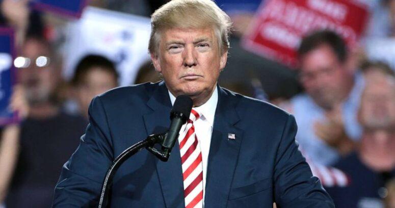 ¿Por qué son importantes los votos del Colegio Electoral para que Donald Trump reconozca públicamente su derrota?