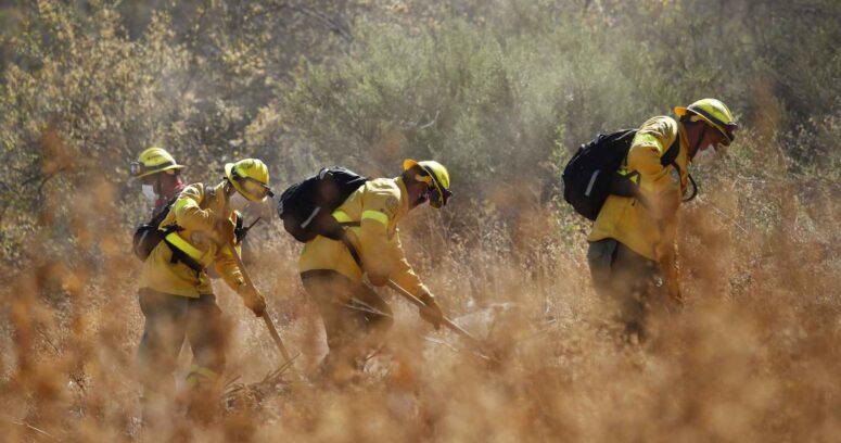Nueva Brigada Central combate incendio rural en Puente Alto