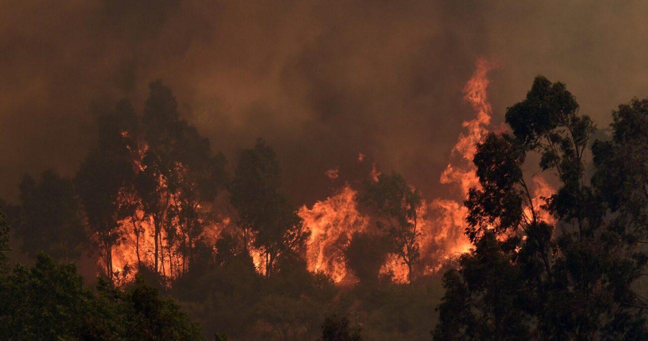 Piñera anunció acciones legales contra quienes resulten responsables. Foto: Agencia UNO