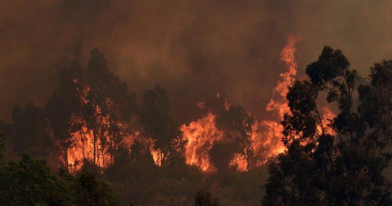 Incendio en Quilpué: levantan toque de queda en provincia de Marga Marga