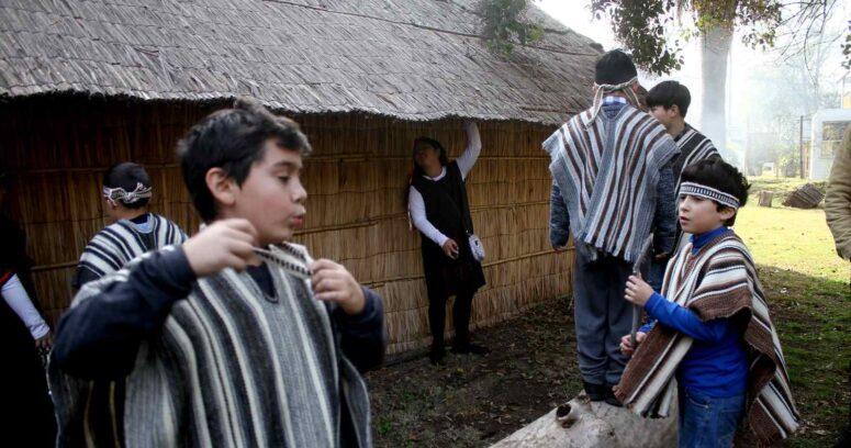 La visión mapuche, un aporte para la educación intercultural