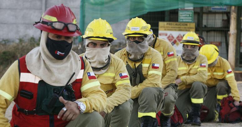 """""""Empresas forestales y CONAF trabajan juntos para combatir compleja temporada de incendios"""""""