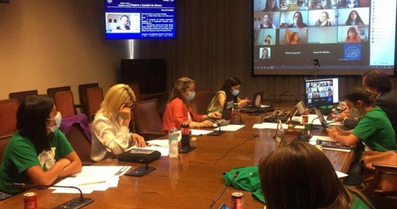 Comisión de Mujeres inició tramitación de proyecto que despenaliza el aborto