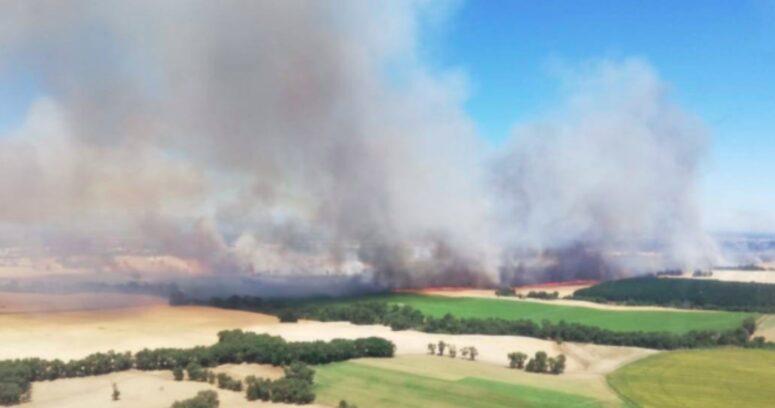 Onemi decreta Alerta Roja en Yungay por nuevo incendio forestal