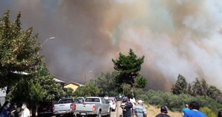 Ordenan la evacuación del sector de Las Toscas por incendio forestal en Collipulli