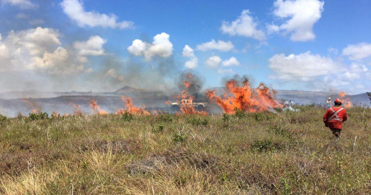 Las llamas afectaron a zonas arqueológicas de la isla. Foto: CMN