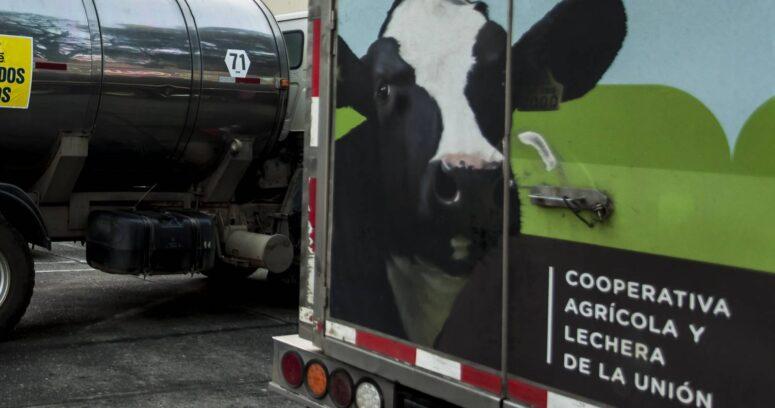 Campaña solidaria de la CPC: más de 26 mil litros de leche fueron donados por productores a Red de Alimentos