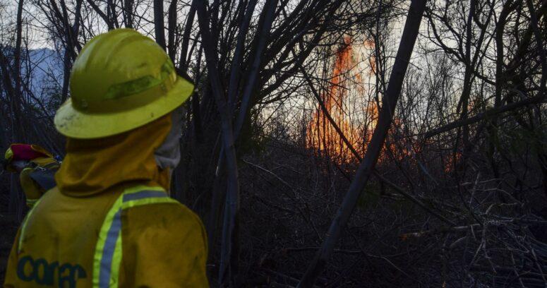Seis incendios forestales afectan a la Región de La Araucanía