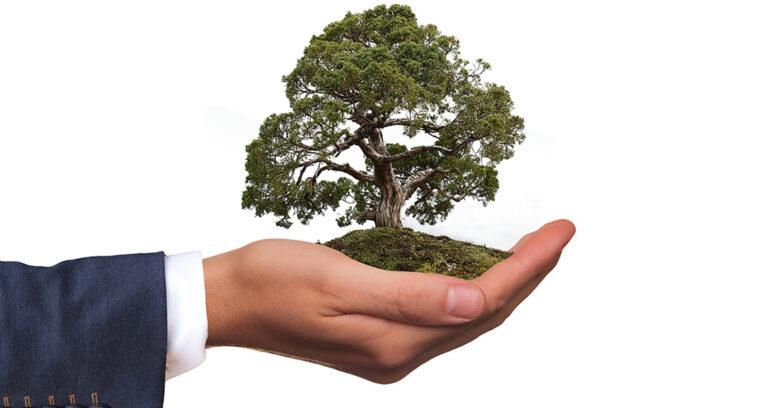 Santander anuncia ambición de alcanzar cero emisiones netas de carbono en 2050