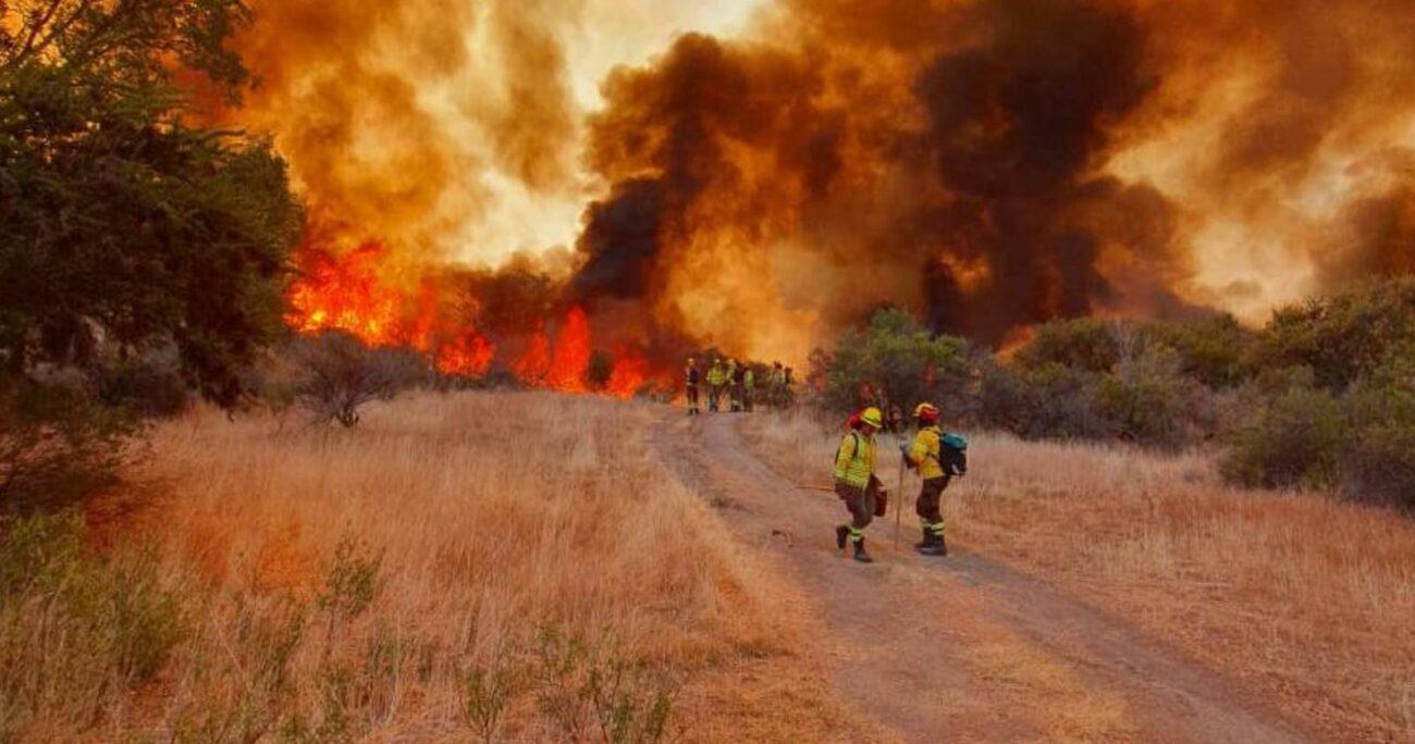 Diversas compañías de Bomberos están combatiendo las llamas. (Onemi).