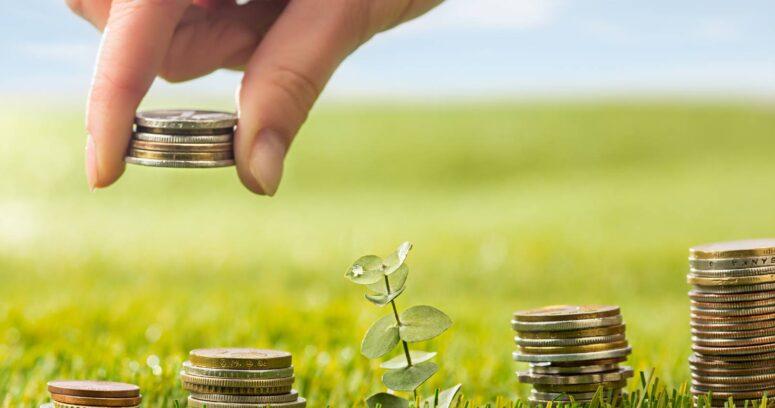 Sustentabilidad y ganancias: el propósito de las empresas que crea valor a largo plazo