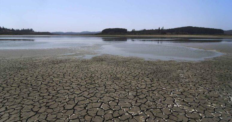 Día Mundial del Agua: la importancia de una correcta gestión de los recursos hídricos
