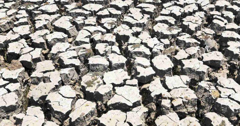 """""""Naciones Unidas plantea la escasez hídrica como"""
