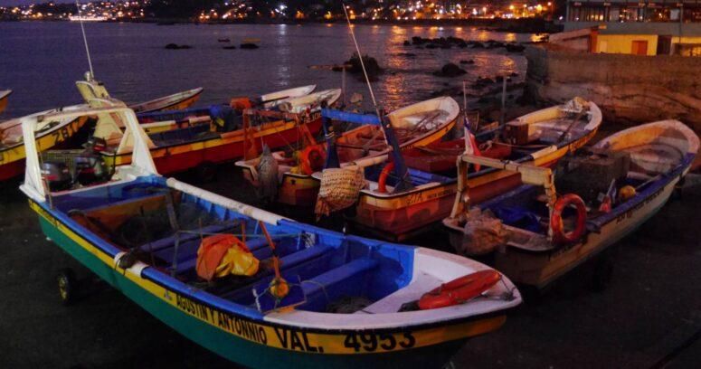 Onemi: Alerta Roja para las comunas del borde costero nacional por tsunami