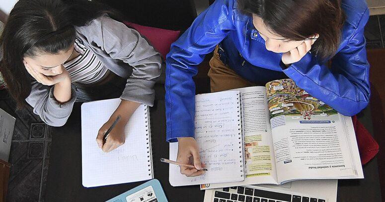 CEP: cuidado y educación de niños en el hogar generó más tensiones en la pareja