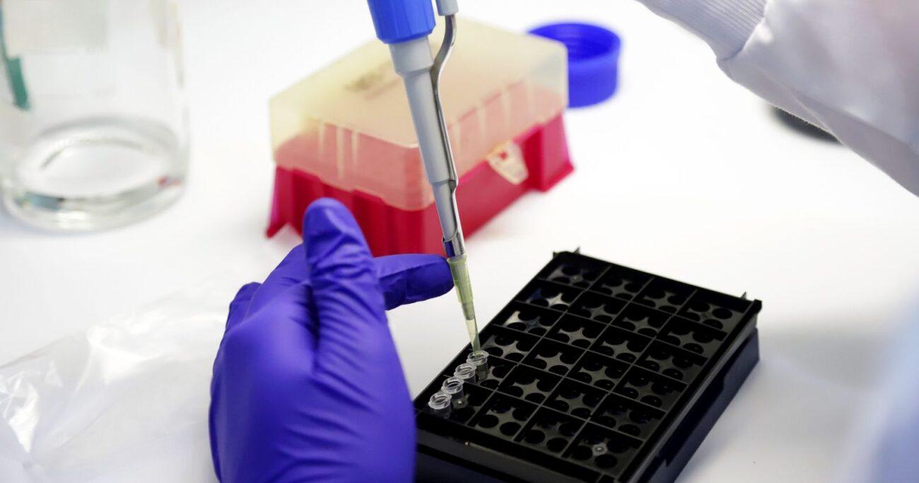 Diversos centros científicos gubernamentales están analizando las mutaciones del virus. AGENCIA UNO/ARCHIVO