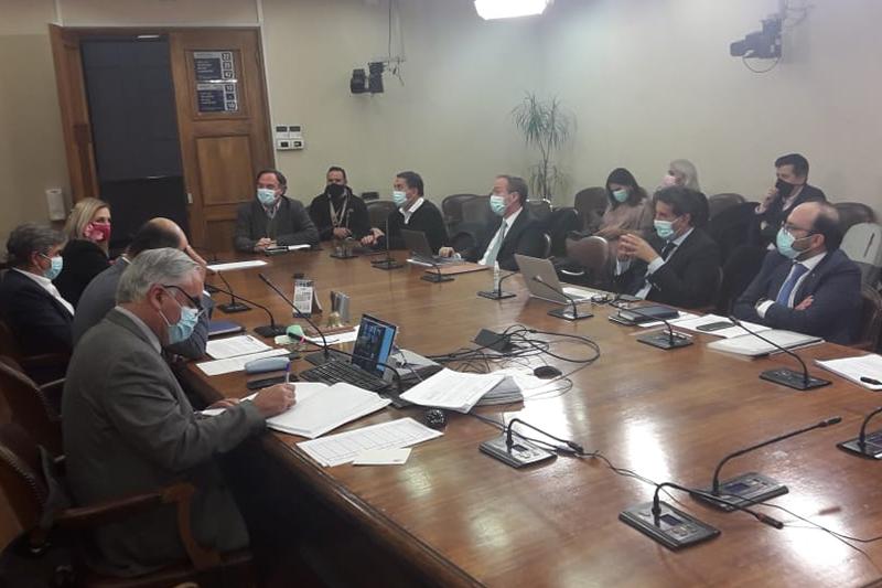 En tanto, se rechazó la propuesta de Chile Vamos que buscaba reemplazar el impuesto con un tributo al retiro del FUT. CAMARA