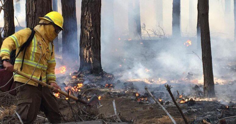 """""""Alerta Roja para Valparaíso por incendio forestal en Reserva Lago Peñuelas"""""""
