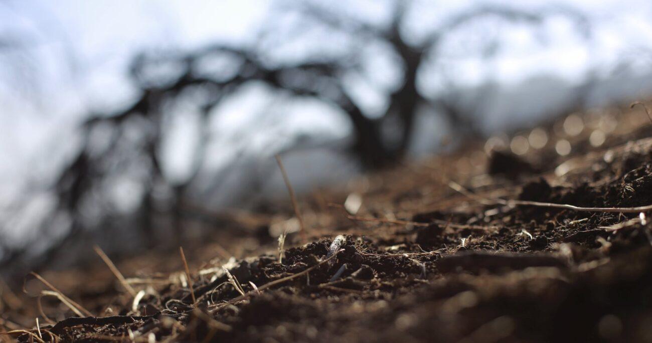 Se pronostica que para septiembre las regiones más secas serán Valparaíso y Los Ríos. AGENCIA UNO/ARCHIVO